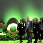 GOF at COP25