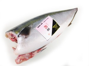 Shiki Buri Dress / Hamachi Yellowtail Image