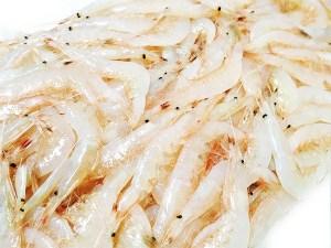 Shira Ebi - Japanese glass shrimp Image