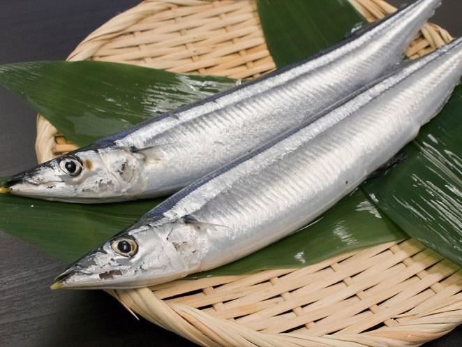 Sanma - Pike mackerel