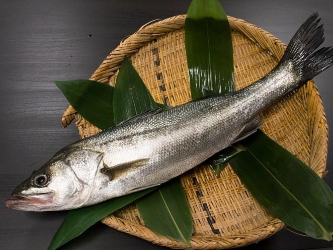 Suzuki - Japanese sea perch