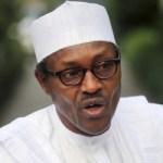 Niger Republic leader pays solidarity visit to Buhari