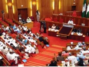 The Nigerian Senate in session