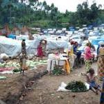Borno prepares to re-open public schools, relocates 4,506 IDPs