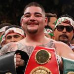 Ruiz stuns Joshua to become boxing's world heavyweight champion