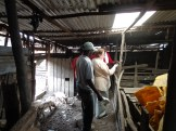 Elaine Jones touring the pig and poultry projects at Dandora. Photo credit: Evalyne Wanyama.