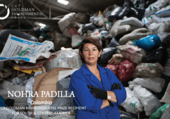 The article about Nohra Padilla produced by the Goldman Environmental Prize.