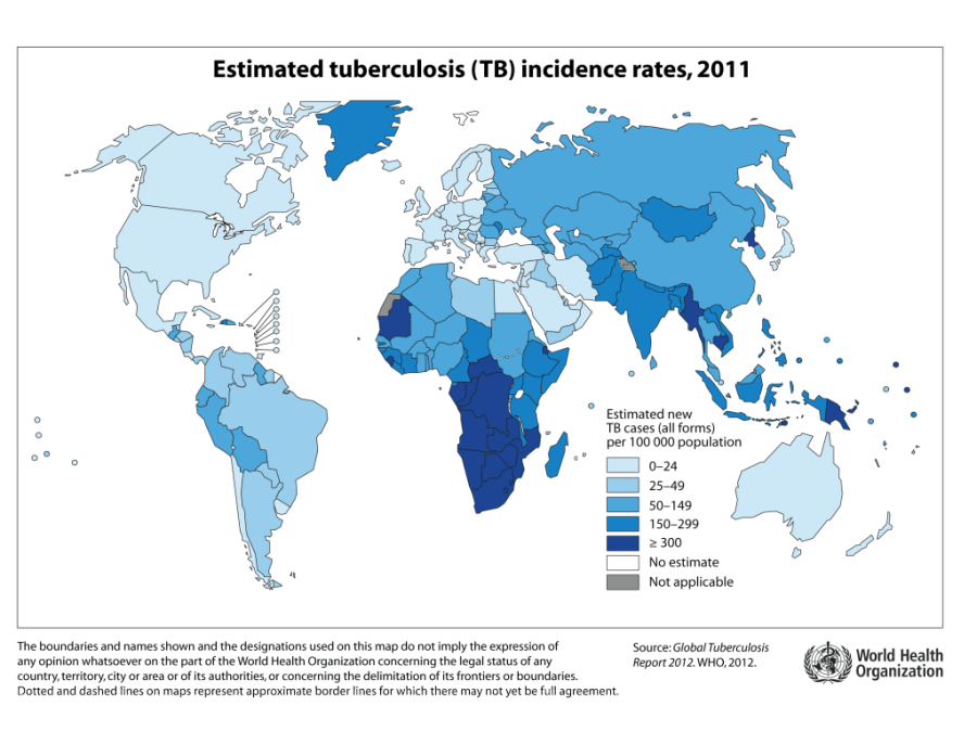 Global TB incidence in 2011