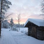 Winter in the deep north: Oulanka National Park, Finland