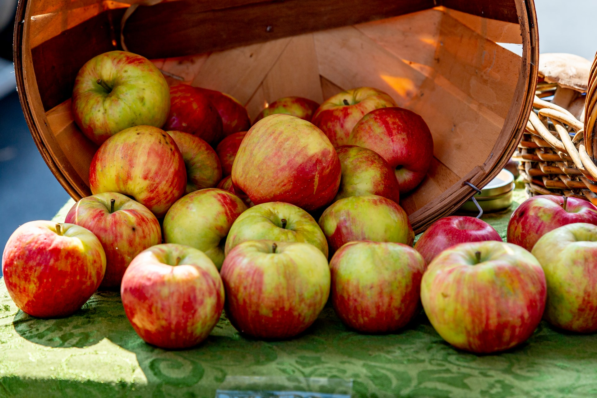 apples for bone health