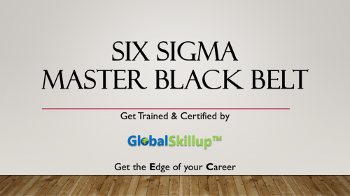 Six sigma Master Black Belt