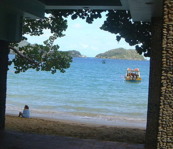 View of Little Tobago. Photo by Jim F. Bleak