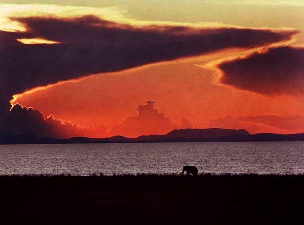 Zimbabwe Sunset. Photo by Steve Evans.