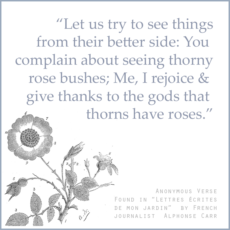 """Let us try to see things from their better side: You complain about seeing thorny rose bushes; Me, I rejoice and give thanks to the gods That thorns have roses."" ― Anonymous verse found in ""Lettres écrites de mon jardin"" by French journalist Alphonse Carr."
