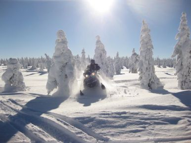 Tim S. - Snowmobiling outside of Yellowstone National Park.