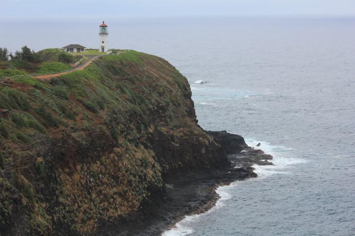 Kilauea Point