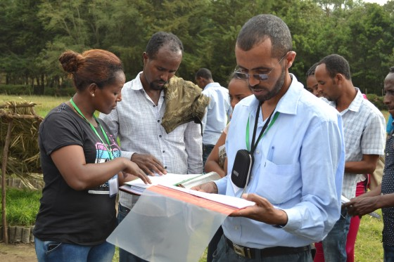 Workshop participants learning how to record results of propagation trials in the nursery at Wondo Genet College
