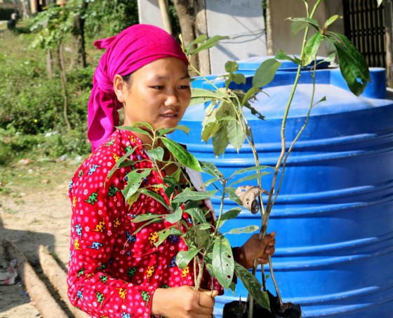 Local villager taking magnolia seedlings from the nursery to the planting site. Credit: Hieu Nguyen/CPC
