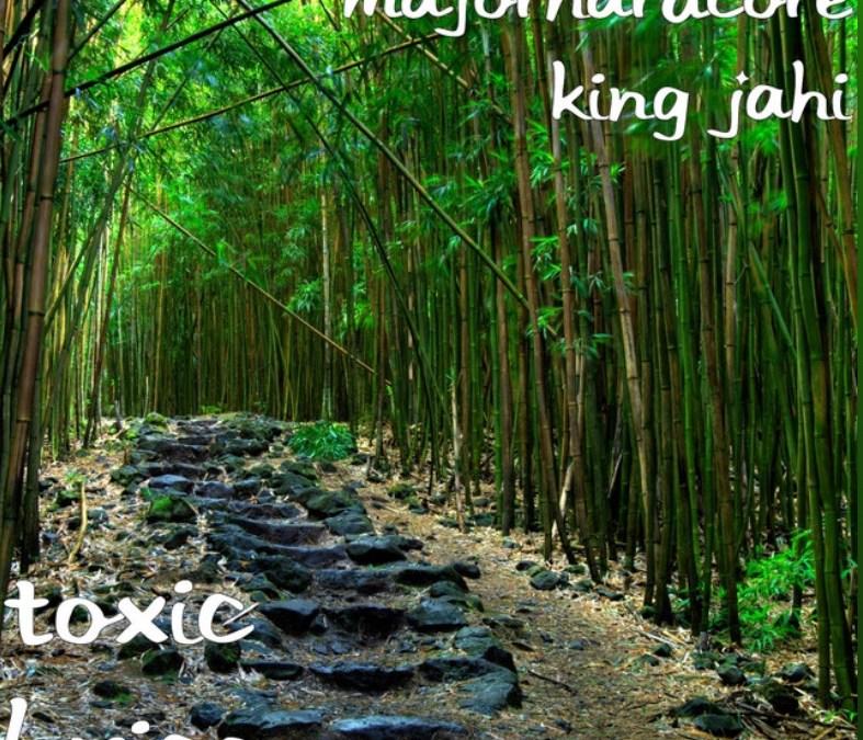 """King Jahi """"Toxic Lyrics"""" EP"""