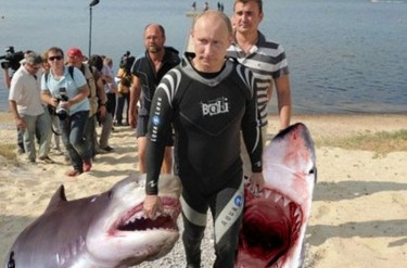 Putin and sharks by LiveJournal user YUSKEY_KUN