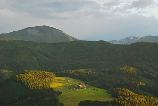 An alm clearing in the Ötscher region of eastern Austria.