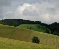 Mountain farms in Austria form a landxape fabric that is part of the country's cultural heritage.
