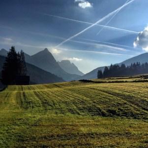 Hayfields near Admont, Austria.