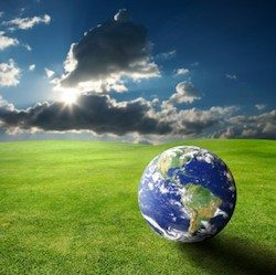Climate Treaty Viability and Privatizing the Fight Against Global Warming