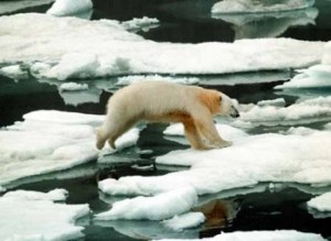 A new cold war as the Arctic warms