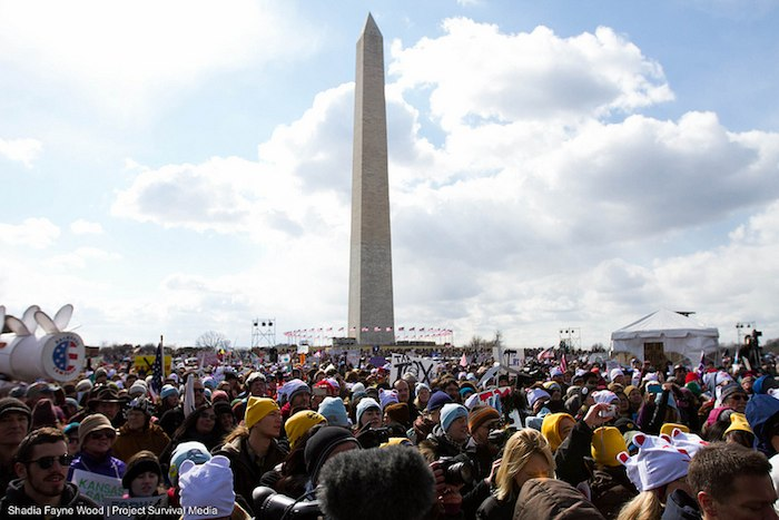 Forward on Climate: More Than 35,000 Rally in DC