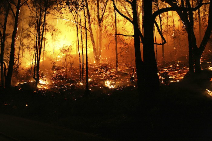 EarthTalk: Global Warming, Droughts and Wildfire