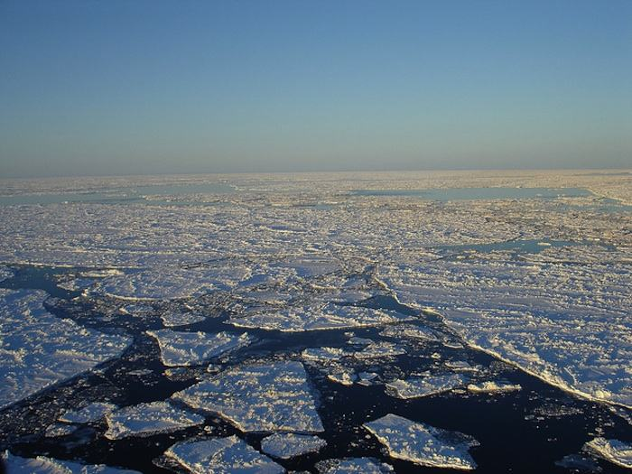 Study of Pliocene Arctic Yields Insights into Climate Change Today, and for the Future
