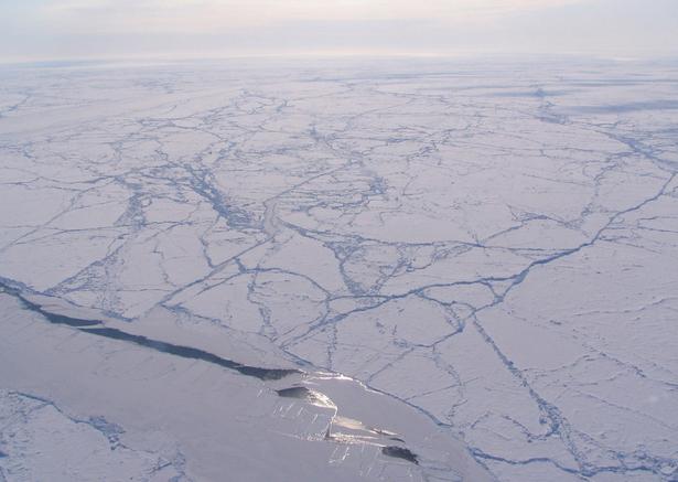 NASA to Study Arctic Sea Ice Loss's Climate Impact Like Never Before