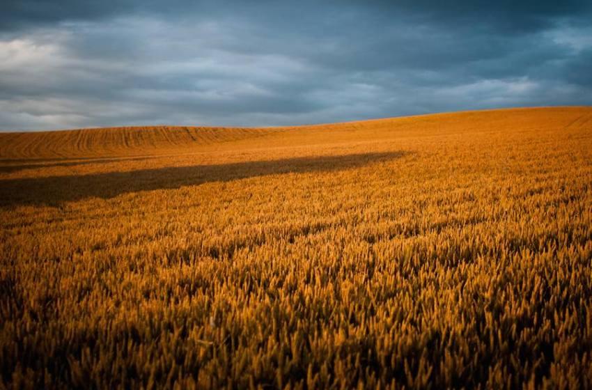 EarthTalk: Global Warming and Nutrition