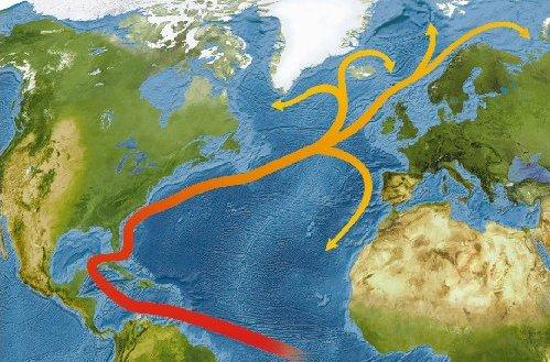 Gulfstream ocean circulation