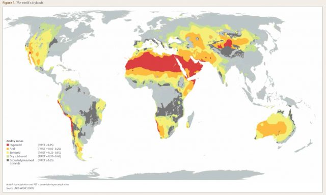 FAO Completes World's First Global Assessment of Drylands Forests