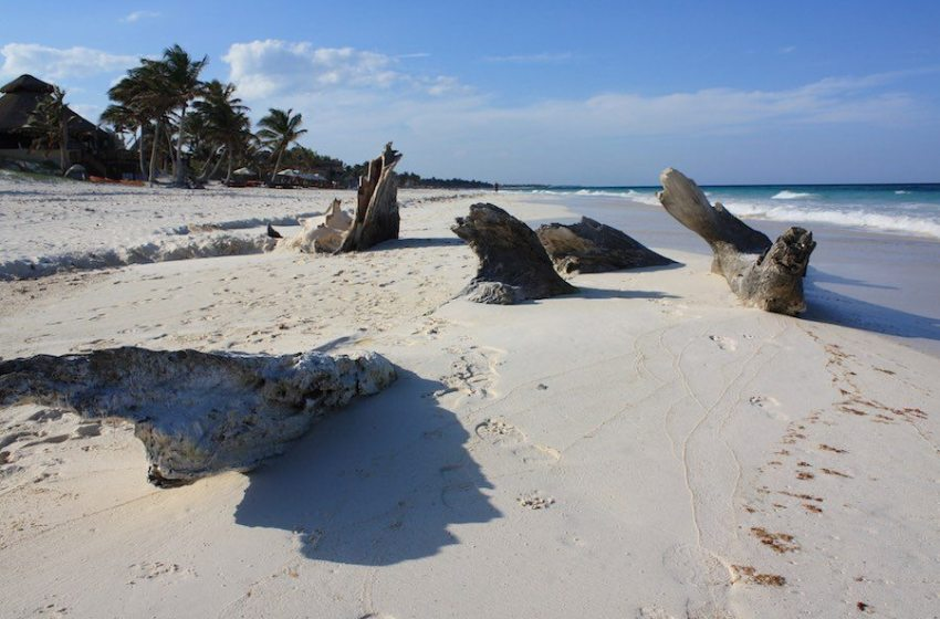 Caribbean Nations Look to International Community to Help Conserve Region's Sandy Beaches