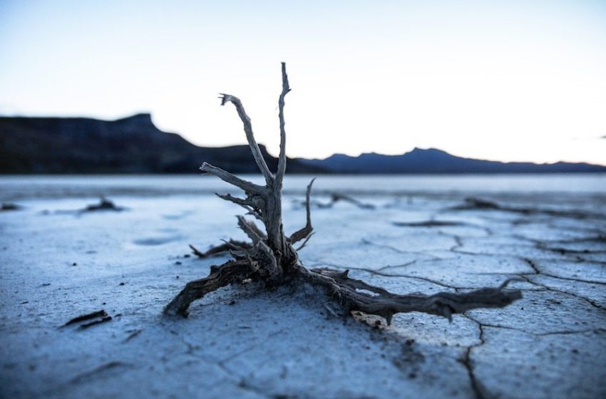 What Can Realistically Be Done to Fight Climate Change?