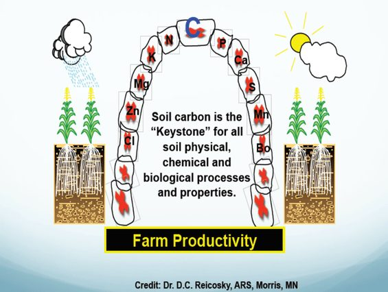 """Soil carbon is the """"Keystone"""" for all physical, chemical, and biological processes and properties"""