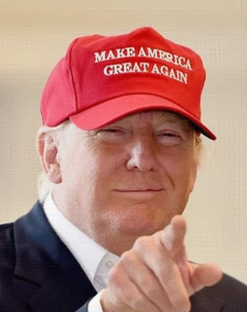 Image result for trump maga