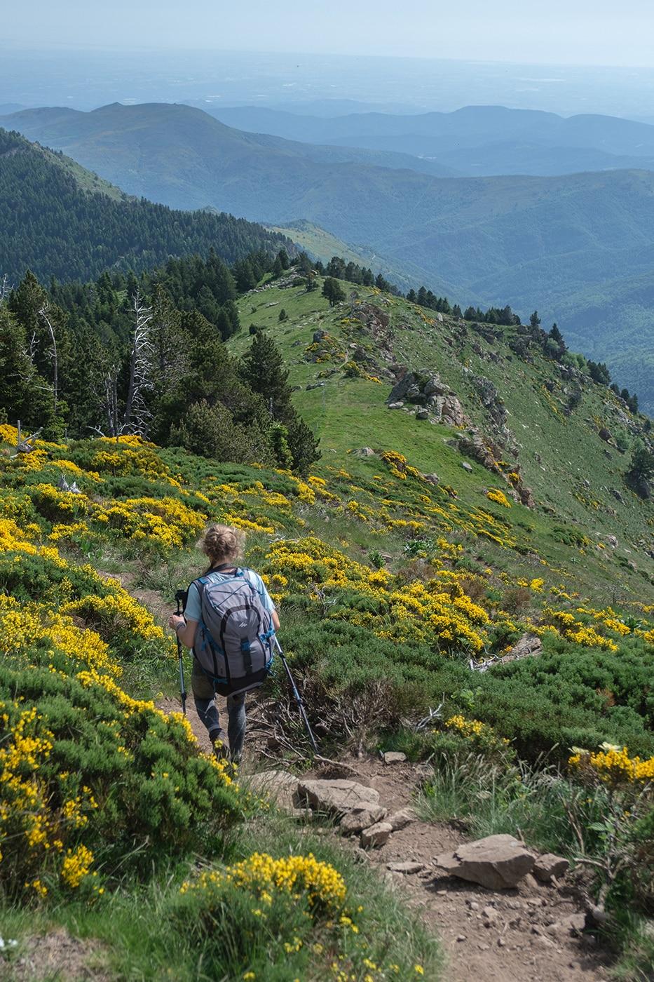 Rando dans les Pyrénées Orientales : le pic du Canigou