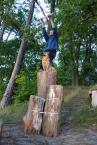 The Monkey Swing