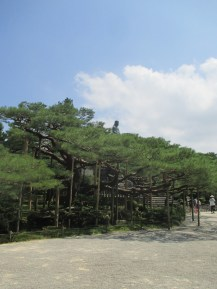 The Meiji Shrine behind another tree with elaborate supporting scaffolding
