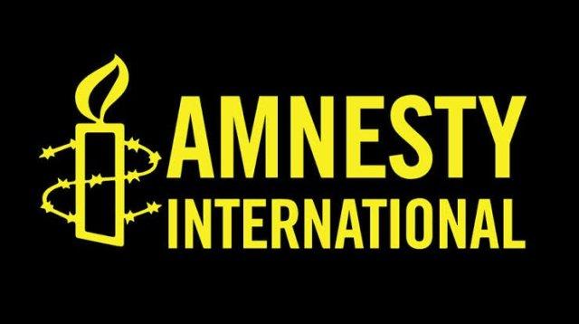 Amnesty International Governance Programme Volunteer 2020, London