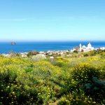 Village de Stromboli fleurs jaunes, mer bleue , phare bâti sur l'ancienne colonne de lave solidifiée