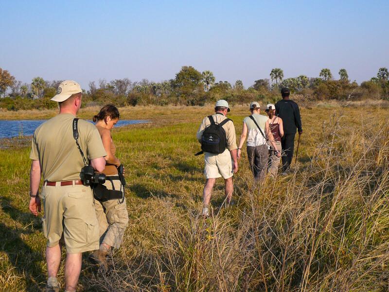 Afrique australe, Botswana - Safari pédestre dans le delta de l'Okavango