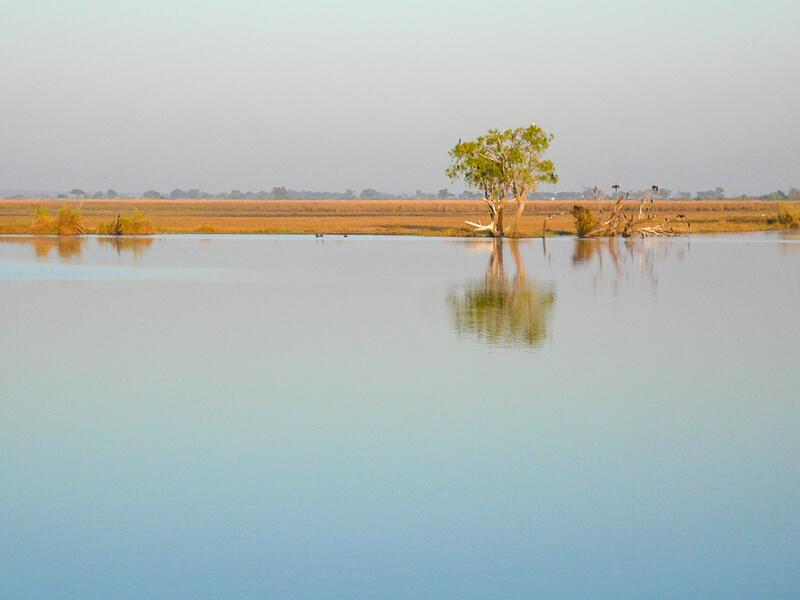 Afrique australe - Botswana - la rivière Chobe