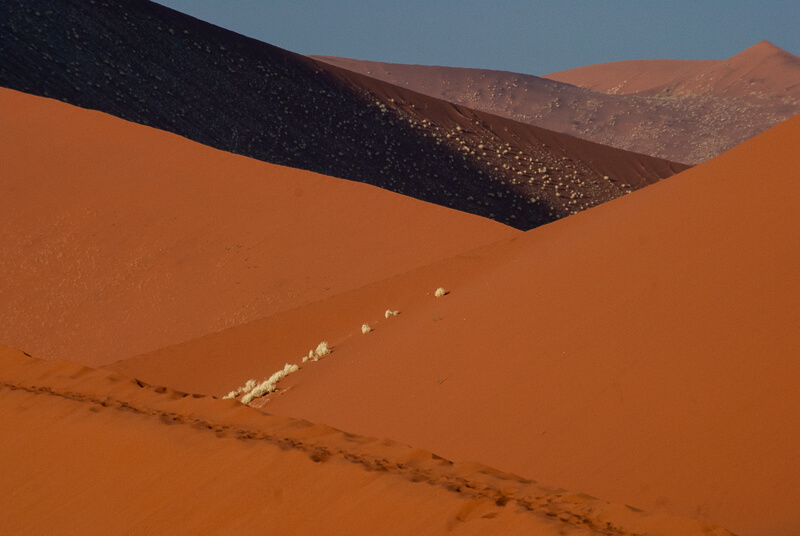 Afrique australe -Namib, les dunes sculptées par le vent
