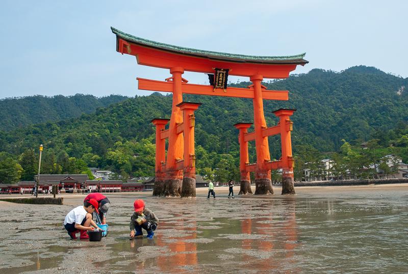 Japon, Miyajima - Tori dans la mer