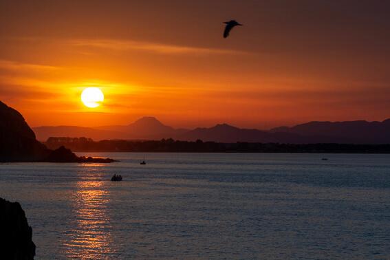 France - Baie de Collioure, coucher de soleil